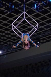 Aerial Cube (1)